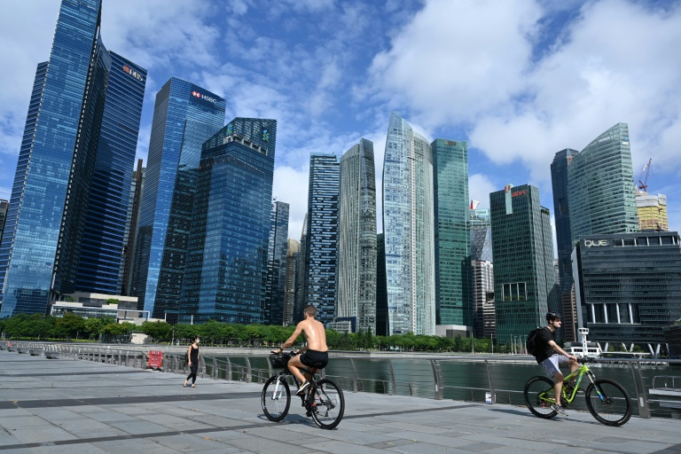 Singapore's information minister insisted no company had been excluded in the selection process.