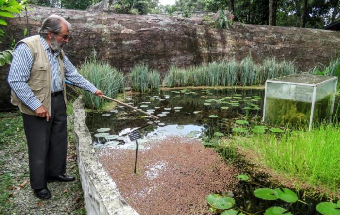 Botanist battles lockdown to save Andean garden paradise