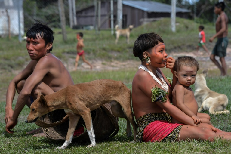 Virus poses cultural threat to Brazil's Amazon tribes