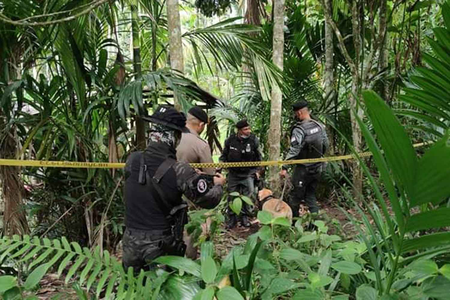 Border patrol police search the area around a village in Than To district, Yala, after finding an insurgent hideout on Tuesday morning. (Photo: Abdullah Benjakat)