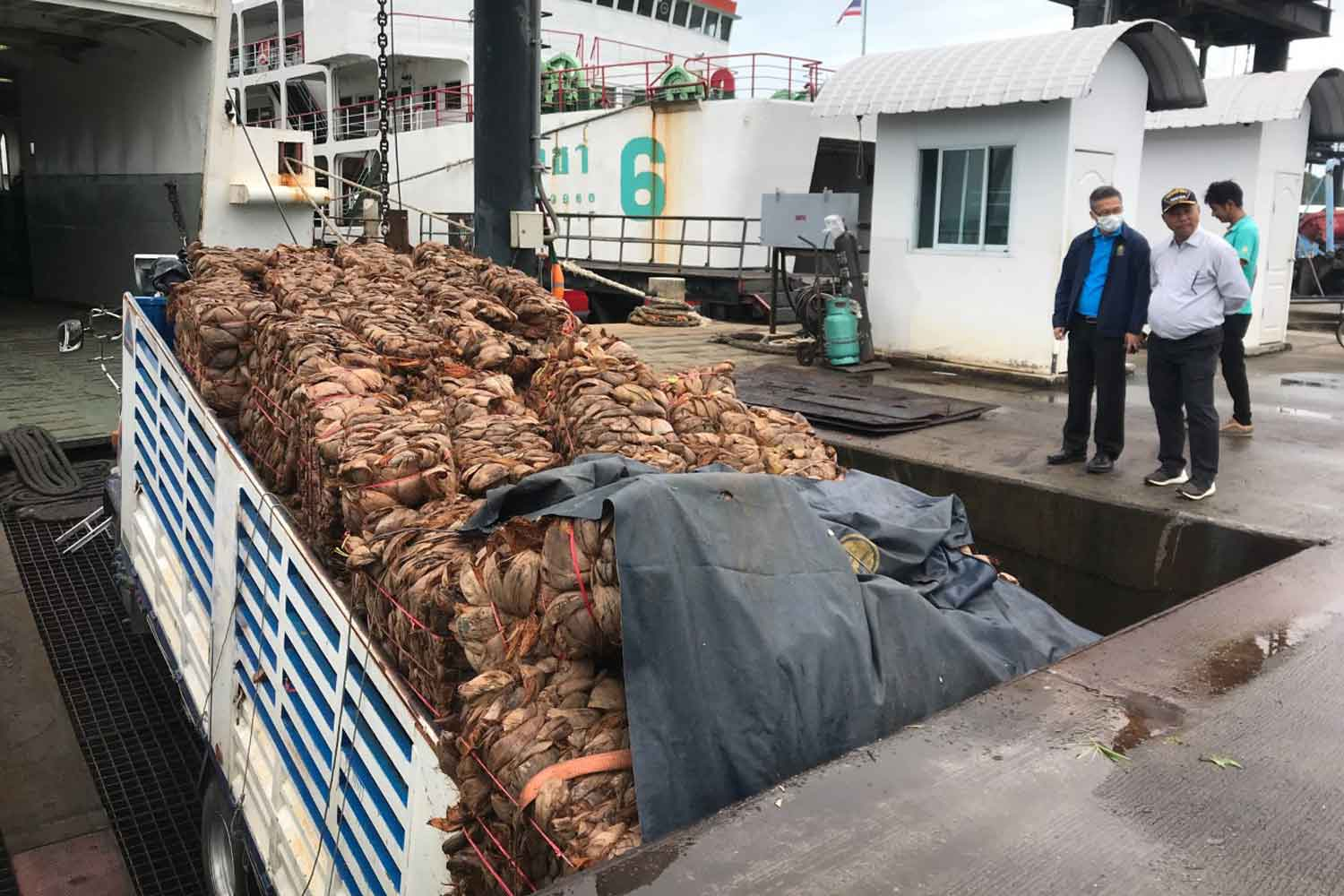 A truck loaded with coconut husks wedged under the wharf at Raja 1 ferry pier on Koh Samui after the boarding bridge collapsed on Tuesday morning. (Photo: Supapong Chaolan)