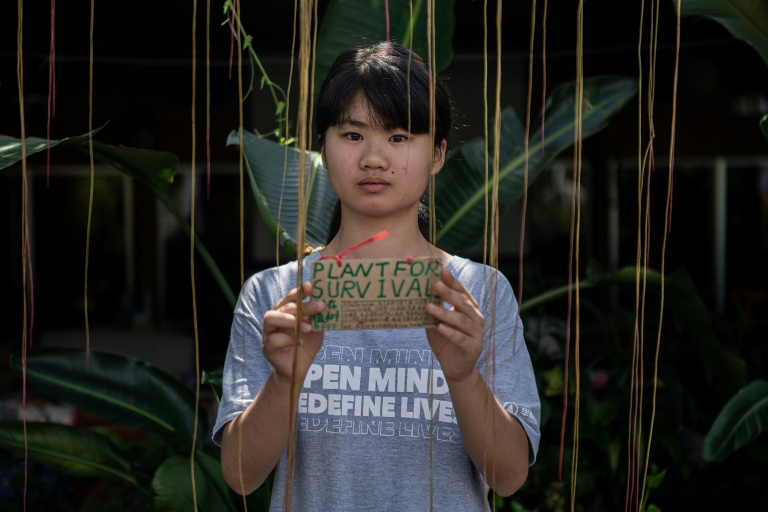 Young Chinese climate activist Howey Ou says she was inspired by Greta Thunberg but has struggled to find wider support in China.