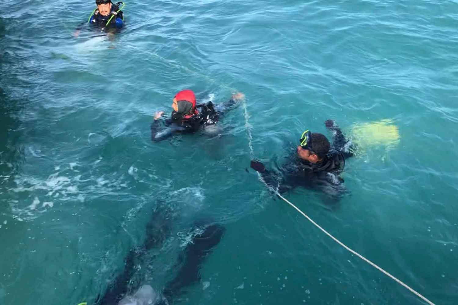 Divers from MS Service Co work to retrieve the bodies of the last two people missing after Raja 4 ferry capsized off Koh Samui island on Aug 1. (Photo: Supapong Chaolan)