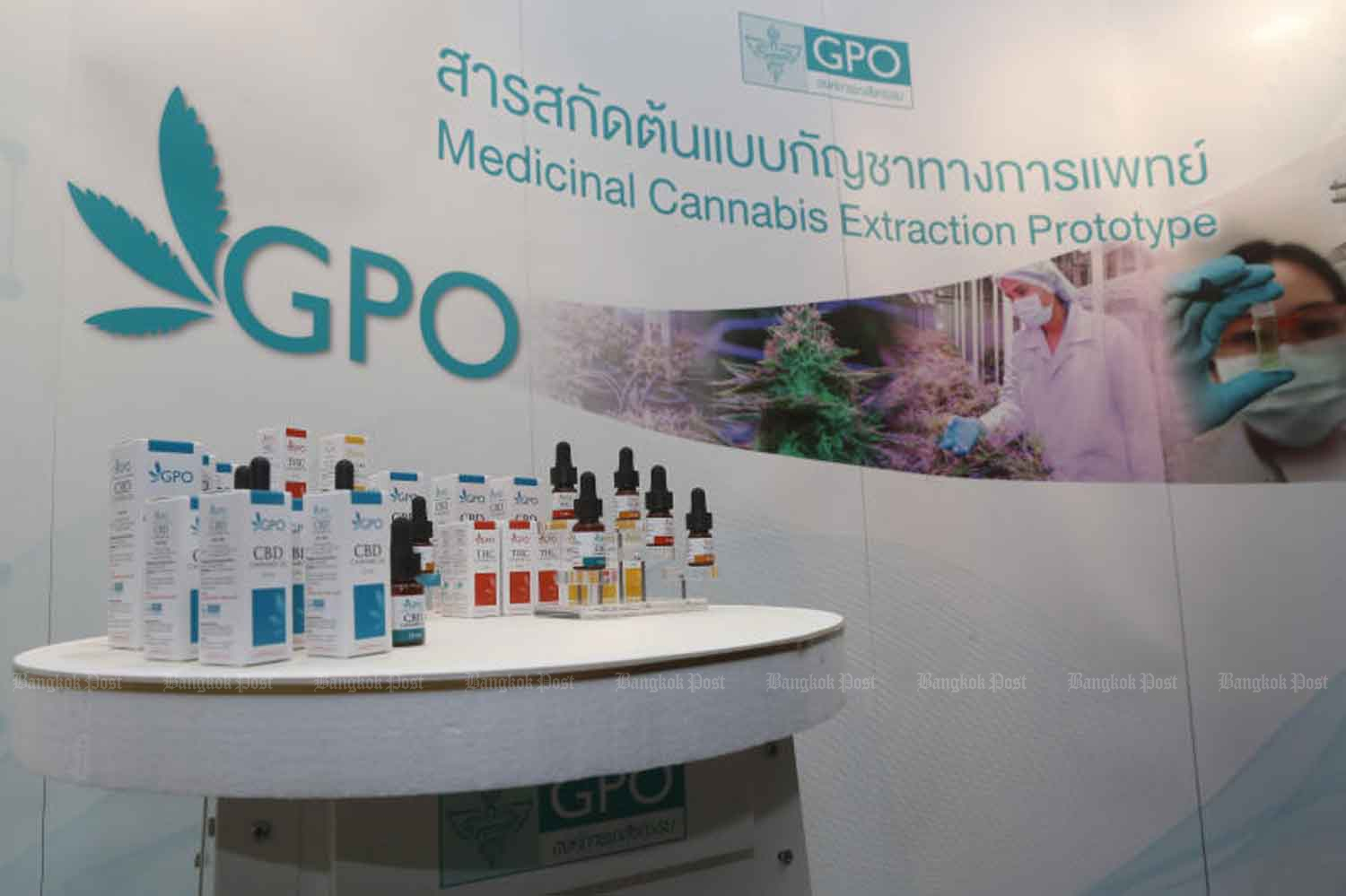 The Government Pharmaceutical Organization introduces its cannabis extract products for clinics in August last year. (Photo by Pattarapong Chatpattarasill)