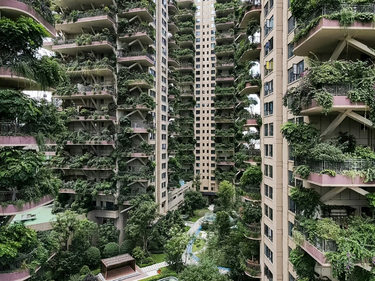 With hardly any residents to care for them, the plants at Chengdu's Qiyi City Forest Garden have overrun the towers.