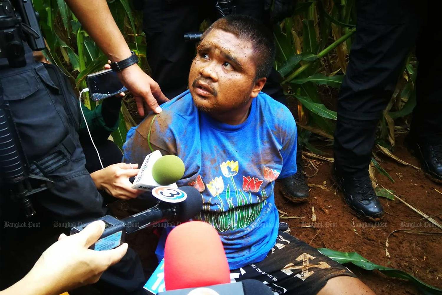 Suspect Arnon Kiram, 21, is captured in a corn field near his house in Tha Luang district of Lop Buri yesterday. (Photo by Wassayos Ngamkham)