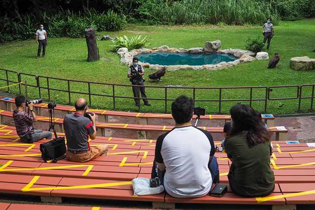 Visitors at the Jurong Bird Park in Singapore on Wednesday. (TODAY photo)