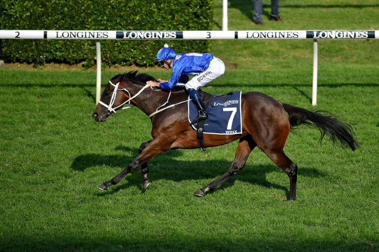 Champion Australian mare Winx has lost her first foal just weeks from giving birth