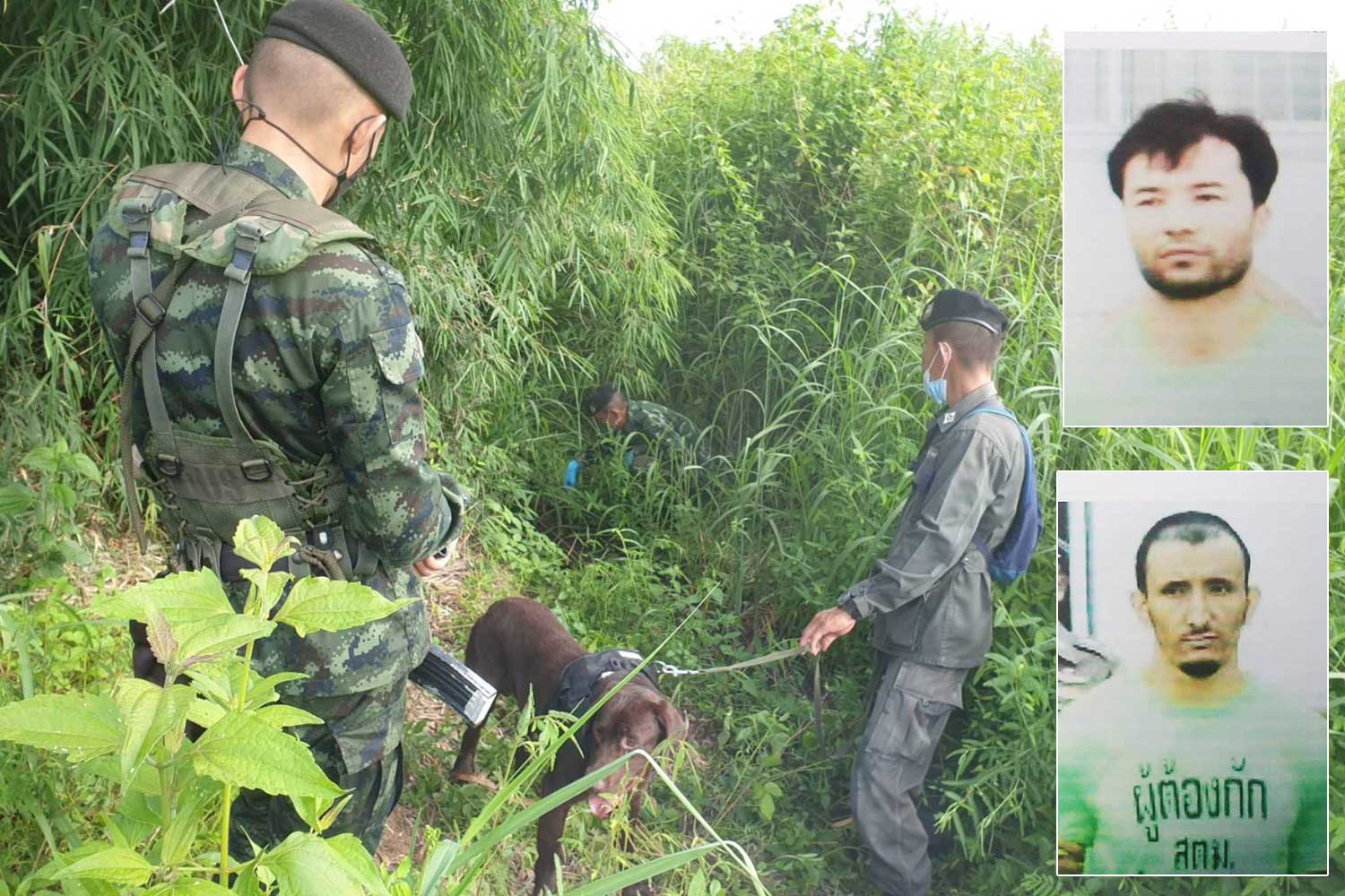 Border patrol police, police and a sniffer dog, continue the search on Friday for the two Uighur men who escaped from an immigration detention centre in Mae Sot district, Tak, early on Wednesday. (Photo: Assawin Pinitwong)