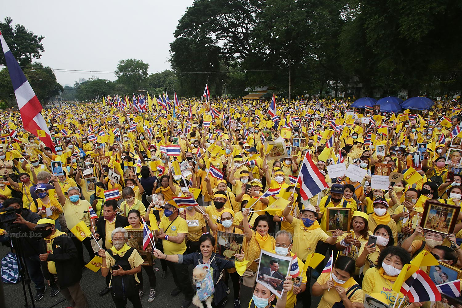 Yellow-clad people converge at Lumpini Park in Bangkok on Tuesday in a show of support for the royal institution. (Photo by Apichit Jinakul)