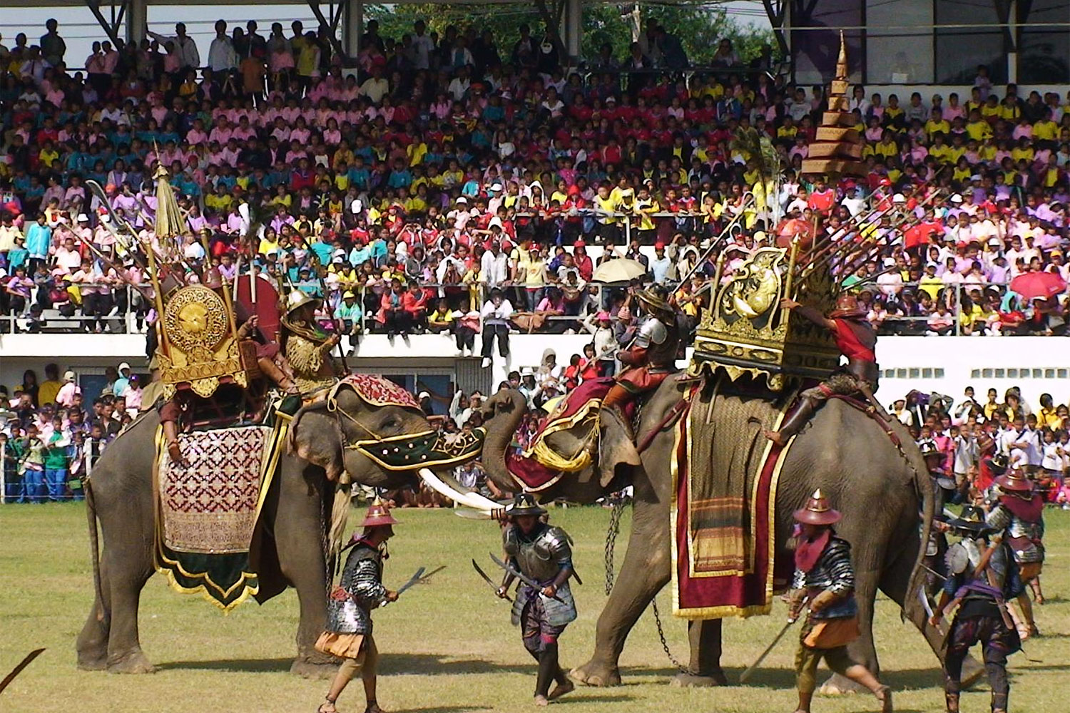 Stampede to Surin for elephants