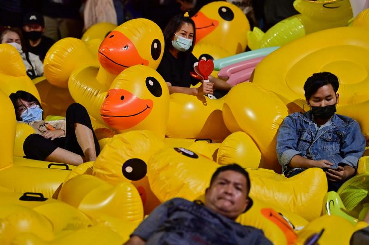 Yellow ducks became protest symbol by accident
