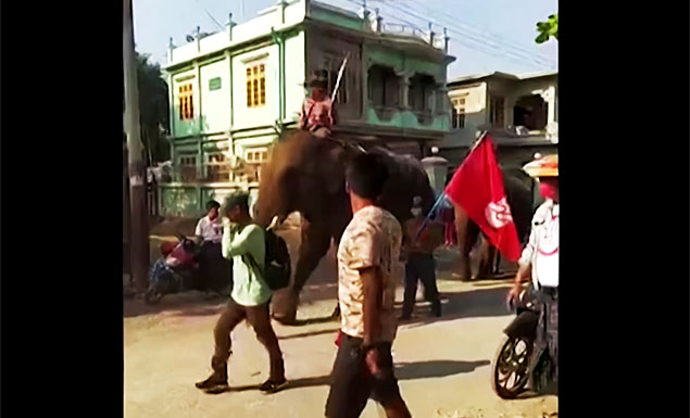 Elephant-riders join Myanmar coup protests