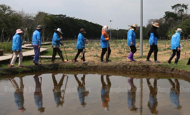 Turning public parks into urban farms