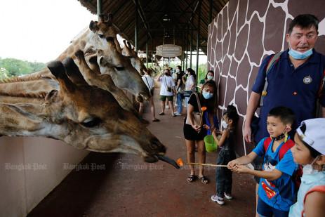 Bangkok's biggest open zoo reopened -3