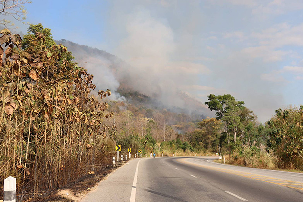 A forest fire is seen from Highway 12 in Wang Thong district of Phitsanulok on Saturday. (Photo by Chinnawat Singha)