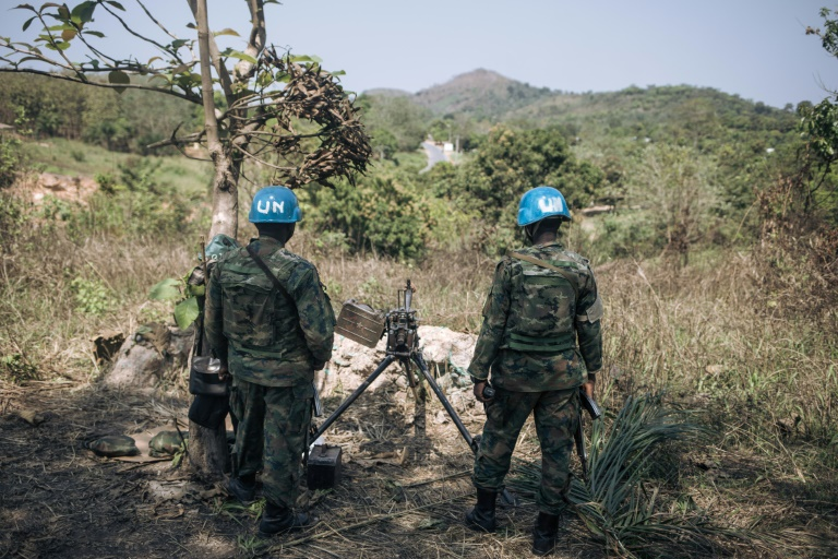 Two UN troops killed in C. Africa as president's re-election confirmed