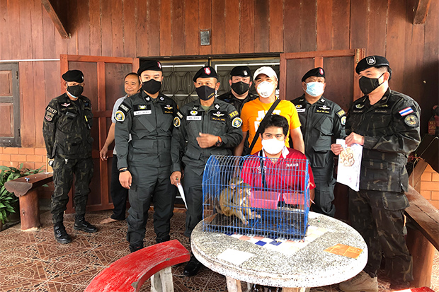Theeraphol Chanmo (seated) was arrested with two macaques at his house in Phrao district of Chiang Mai on Saturday. (Photo from Natural Resources and Environment Crime Suppression Division)