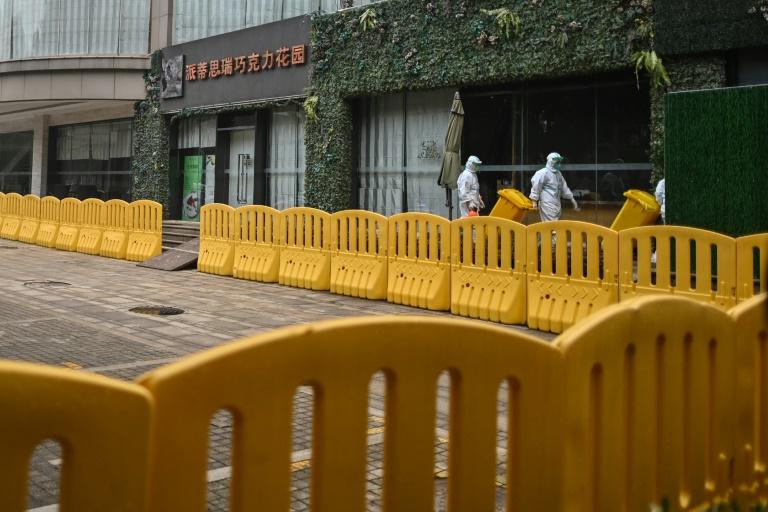 WHO team to start Wuhan virus probe under global glare