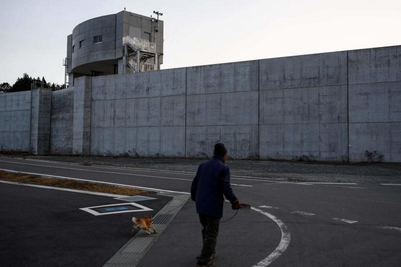 A man walks his dog near a sea wall at Osabe fishing port in Rikuzentakata, Iwate prefecture on Feb 25 (Photo: AFP)