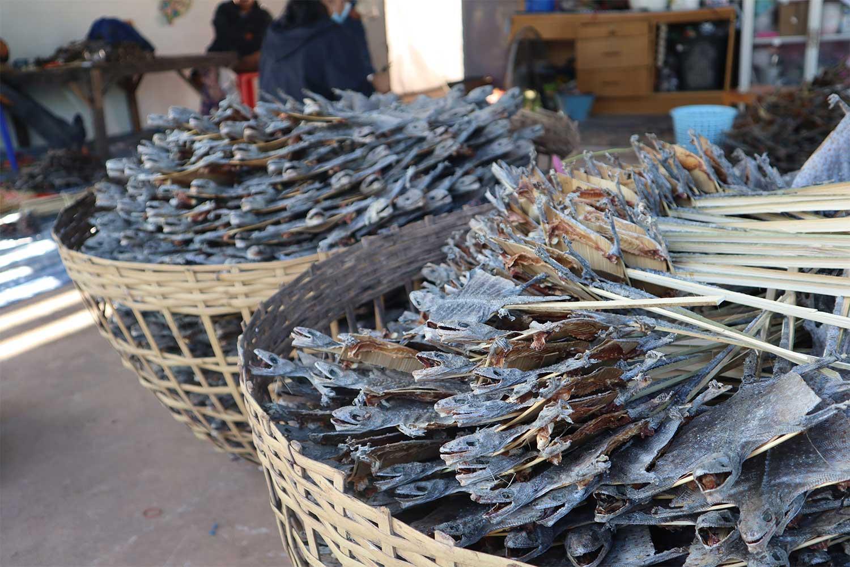 Dried tokay geckos ready for export, at Ban Tan village in Na Wa district of Nakhon Phanom. (Photo: Pattanapong Sripiachai)