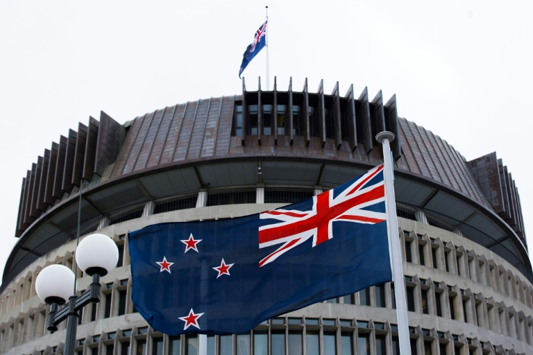 The bereavement allowance passed by New Zealand's parliament gives employees three days' leave when a pregnancy ends with a stillbirth