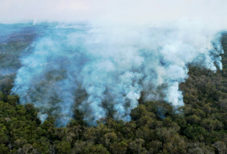 Fires scorched through a third of Brazil's Pantanal wetlands in 2020.