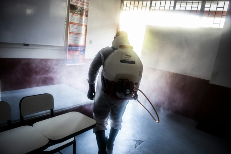 Peru votes amid deadly coronavirus surge