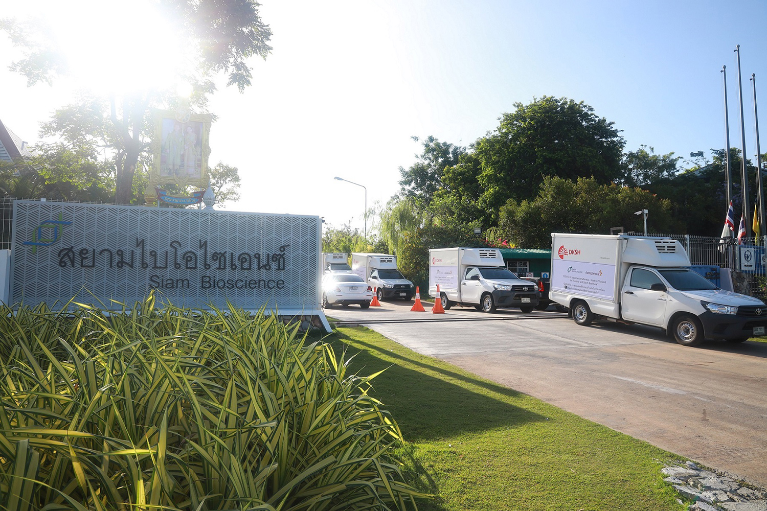 Delivery trucks leave the Siam Bioscience factory in Nonthaburi's Bang Yai district. The company said it will begin supplying the government with its Covid-19 vaccine this week. (Photo: AstraZeneca/Siam Bioscience)