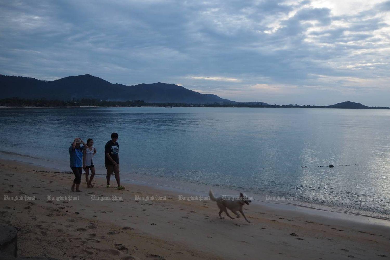 Tourists at Maenam Beach in Koh Samui, Surat Thani province, in September last year. (Bangkok Post file photo)