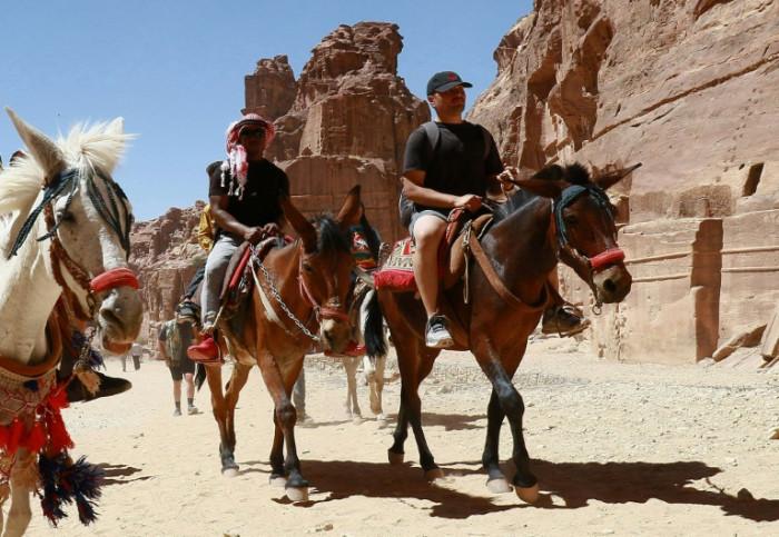 Work dries up for Jordan's donkeys as coronavirus cripples tourism