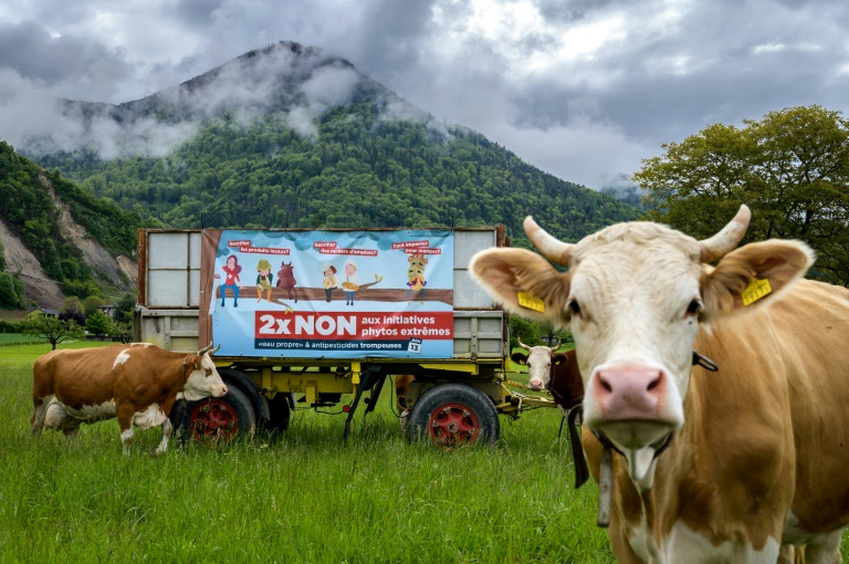 Swiss set to reject synthetic pesticide ban