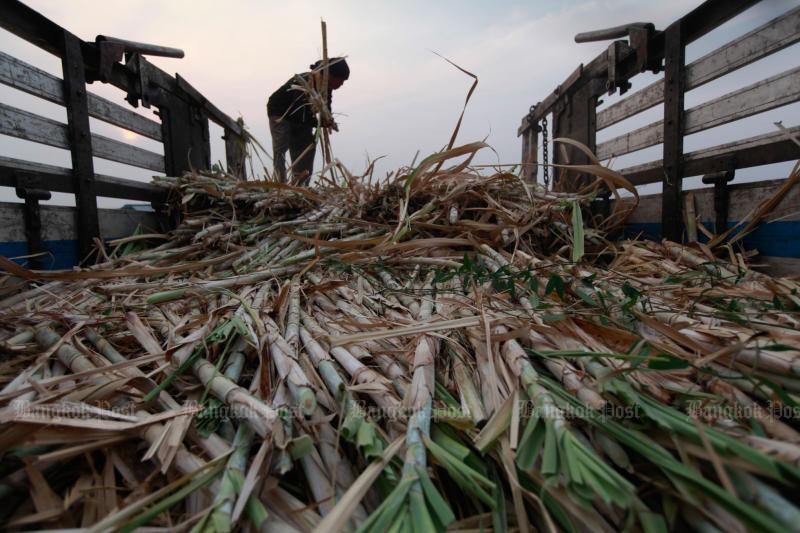 Vietnam imposes dumping levy on Thai sugar