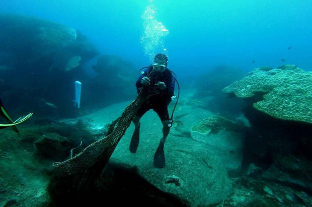 Reef salvage