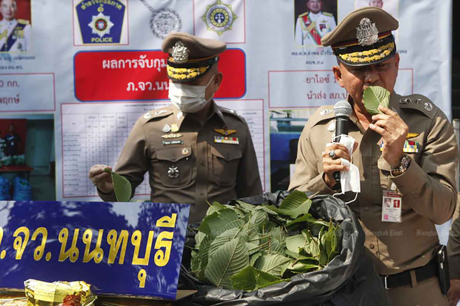 Police display some of their vast haul of Kratom leaves following a crackdown on drug networks in the central region, in Nonthaburi province in February. (Photo: Nutthawat Wicheanbut)