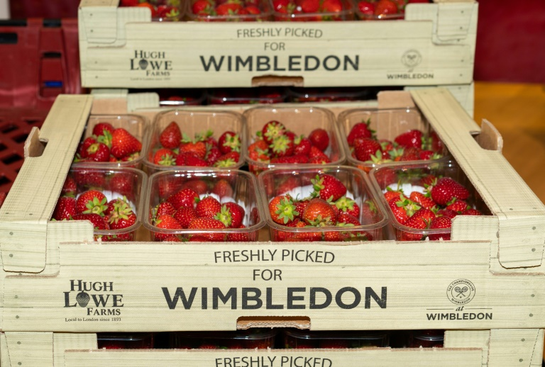 Players change, but the strawberries remain at Wimbledon