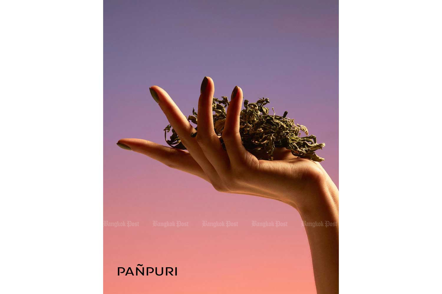 Aromatic Panpuri for your home