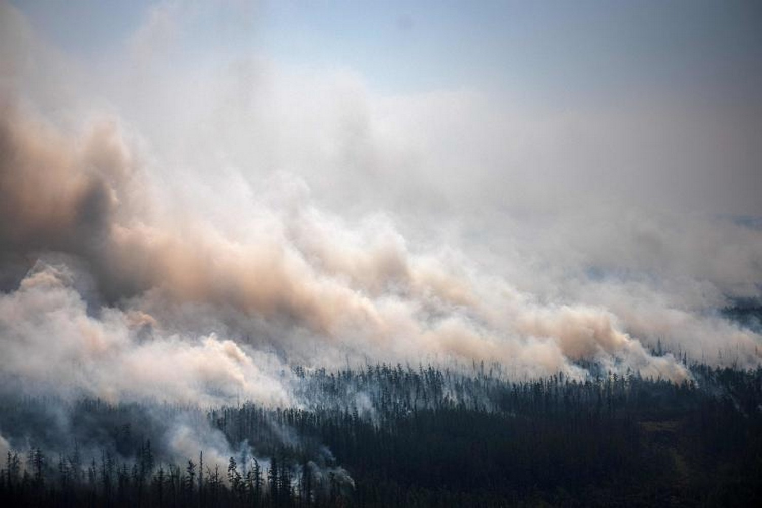 Smoke rises from a huge forest fire outside the village of Berdigestyakh, in the republic of Sakha, in Siberia, on July 27. According to many scientists, Russia - especially its Siberian and Arctic regions - is among the countries most exposed to climate change. The country has set numerous records in recent years and in June 2020 registered 38C in the town of Verkhoyansk, the highest temperature recorded above the Arctic circle since measurements began. (Photo: Dimitar Dilkoff/ AFP)