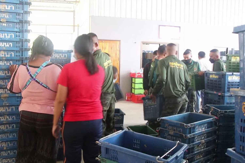 Soldiers infected helping mangosteen buyer