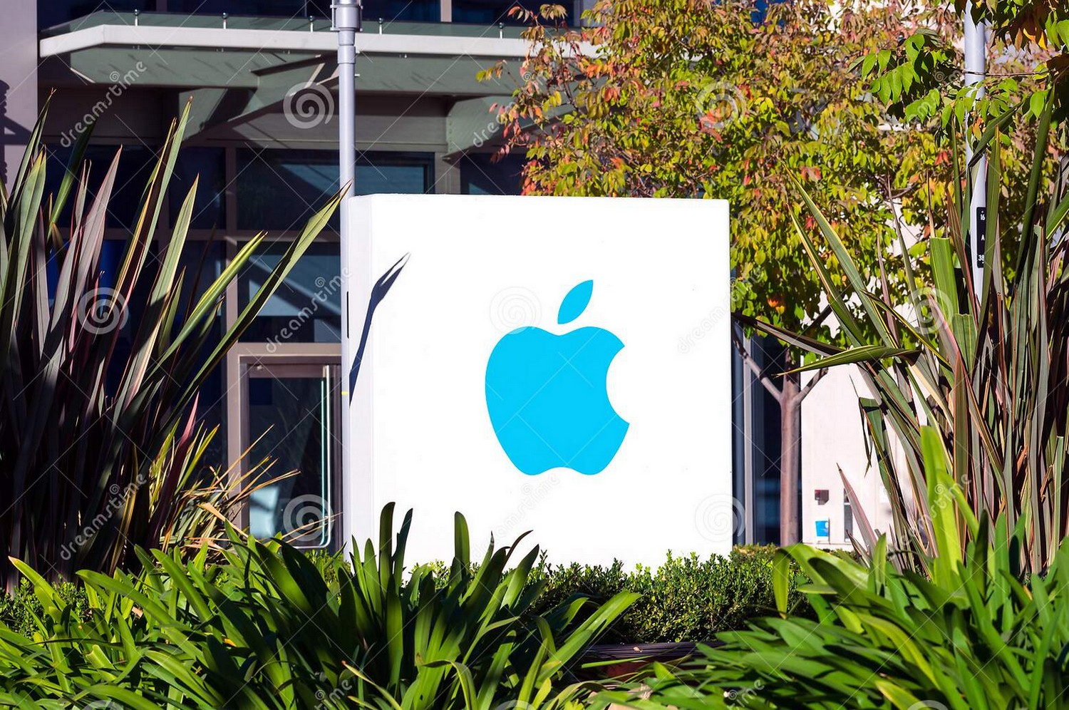 The Apple logo on a signpost at the entrance to one of the offices at its headquarters in Silicon Valley -  Cupertino, California. (Photo Apple Inc)