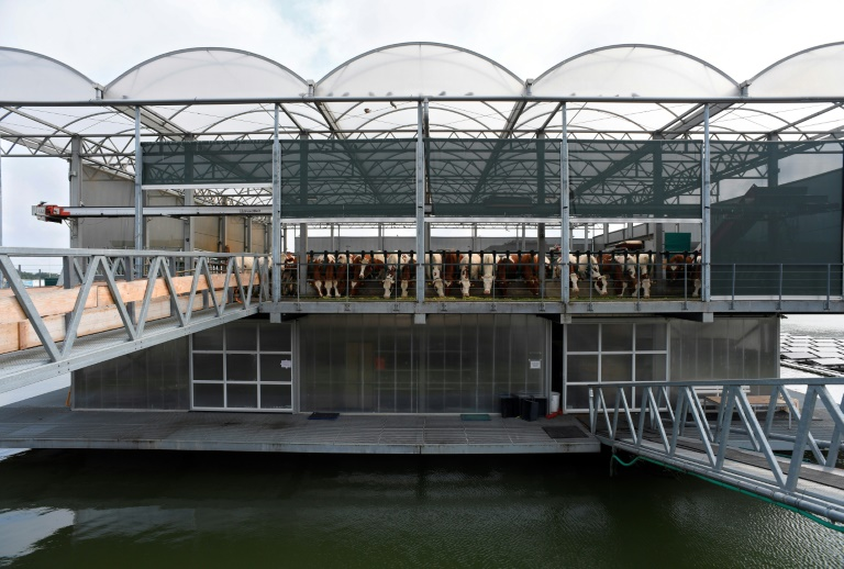 The three-storey glass and steel platform aims to showthe