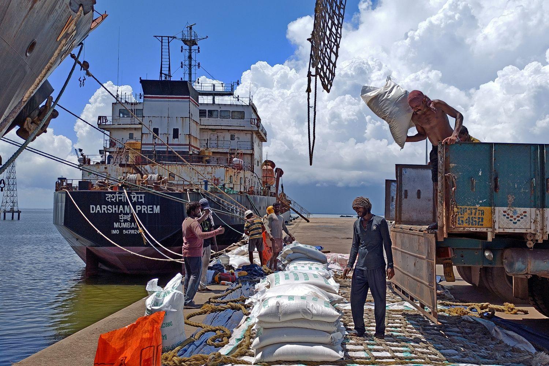 India may corner nearly half of global rice trade