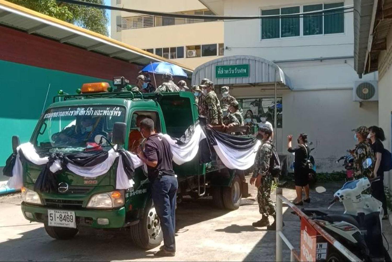 Forest ranger killed in gaur attack in Khao Yai