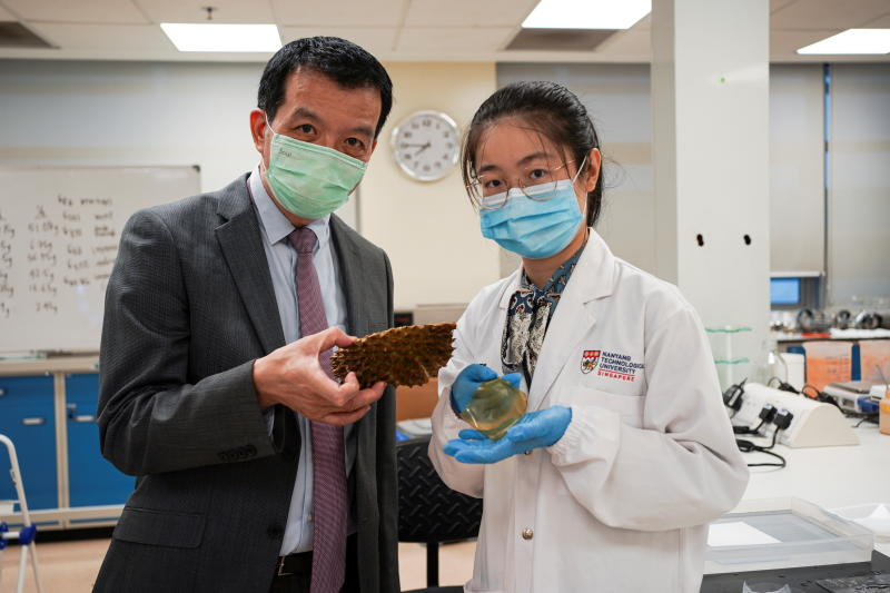 Scientists in Singapore transform fruit leftovers into antibacterial bandages