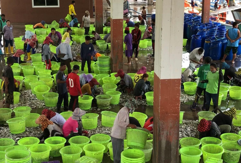 Fishing villages in Trat  under lockdown