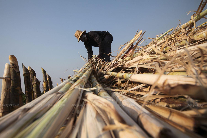 Vietnam probes Thai sugar imports