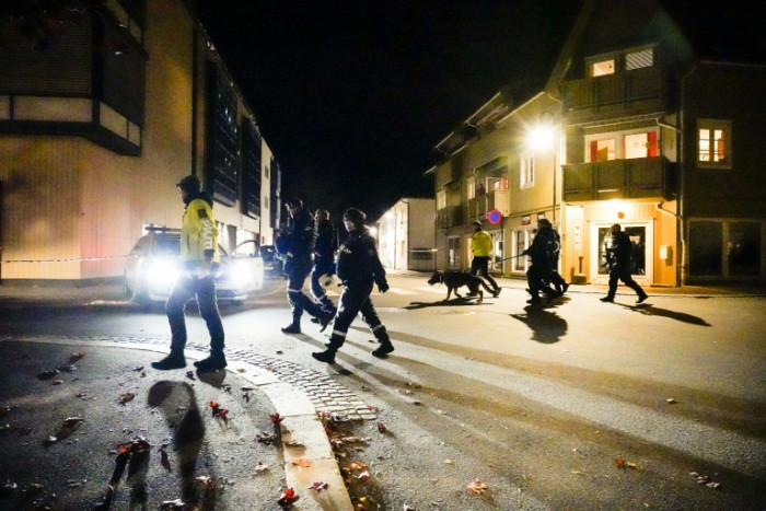 Man arrested after Norway bow-and-arrows killings