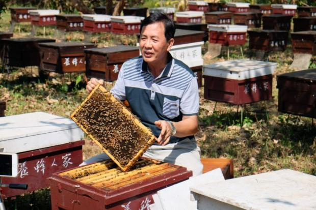 Huang Tung-ming, owner of Bee Farmer cafe and education centre, displays a bee hive.
