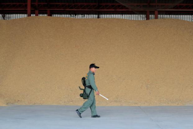 An official walks past a pile of paddy stored in a warehouse in Nakhon Ratchasima. Rice pledging was created in 1981 as a policy tool to tackle plunging rice prices.CHANAT KATANYU