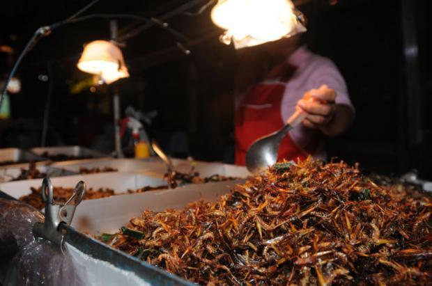 Deep-fried insects are a popular treat at the Klong Toey Market in Bangkok. Photo: Pornprom Satrabhaya
